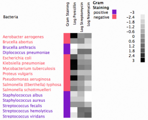 Xan Gregg's Antibiotic Effectiveness Heat Map