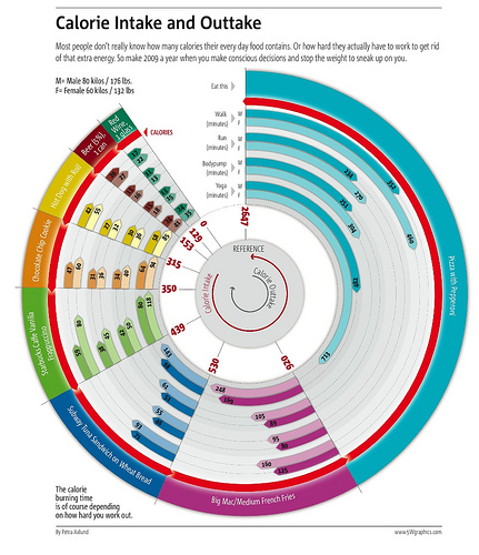 Circular Calorie Chart