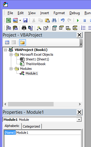 Project Explorer window of the VB Editor